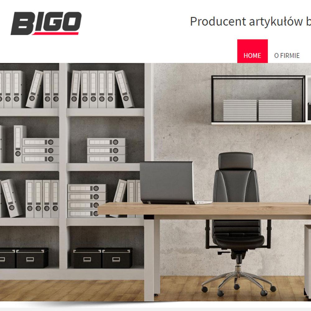 Strona internetowa – www.bigo.com.pl