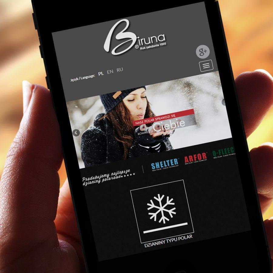 Strona internetowa – www.biruna.com.pl