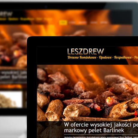 Strona internetowa – www.leszdrew.pl