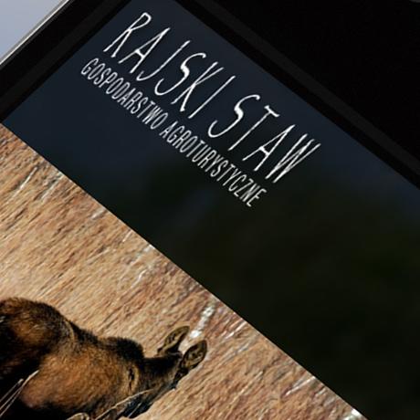 Strona internetowa – www.rajskistaw.com