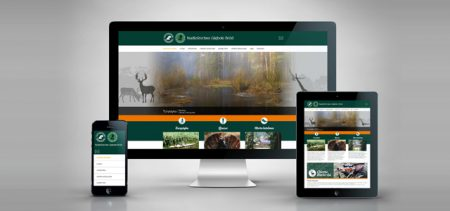 Tworzenie Stron Internetowych w technologii RWD – Strony responsywne, strony mobilne