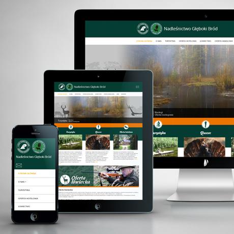 Strona internetowa – www.glebokibrod.pl